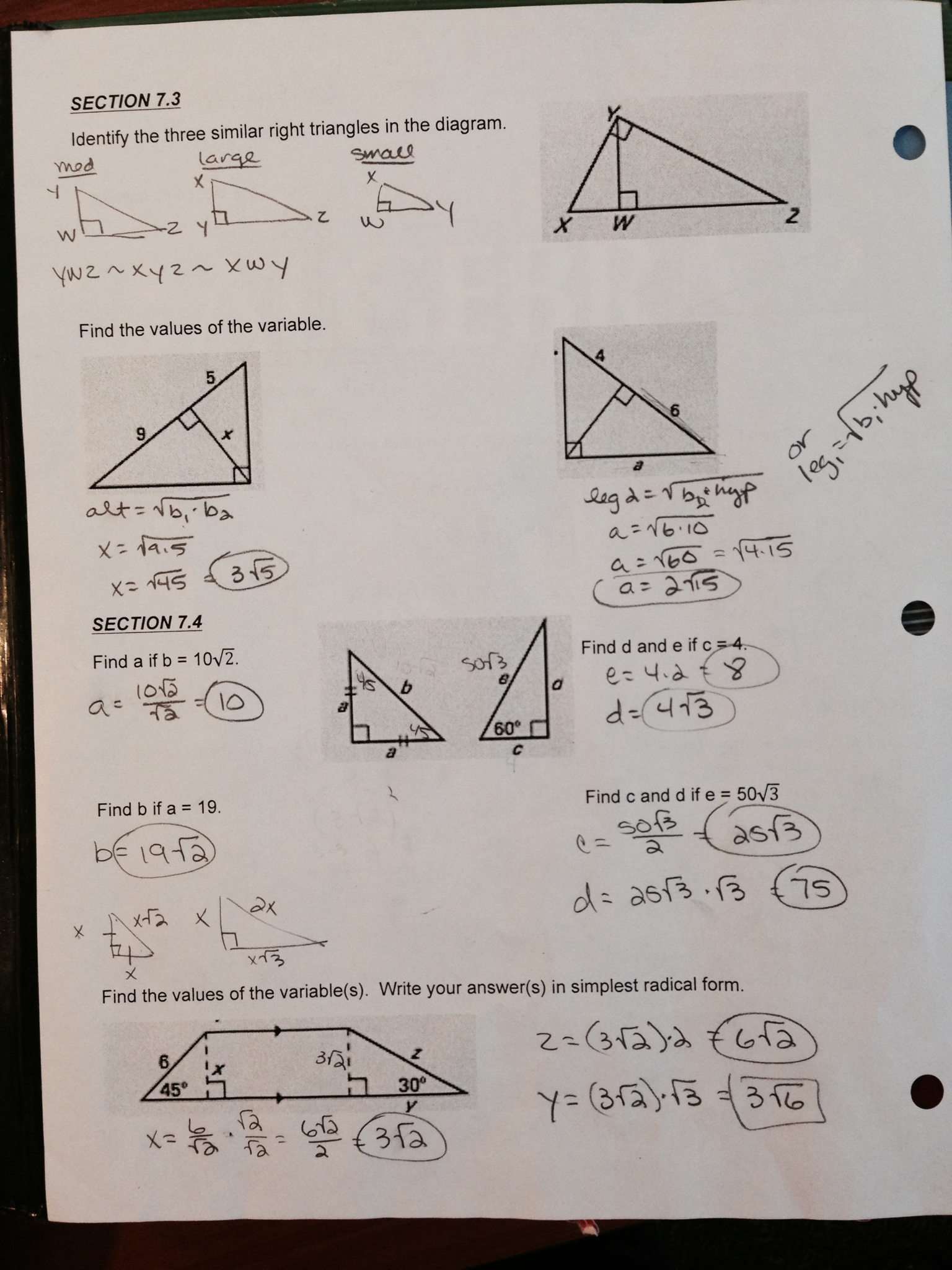 Worksheets Geometry Worksheets Answers geometry worksheet answers sharebrowse of sharebrowse